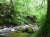 killarney_green-1024x640